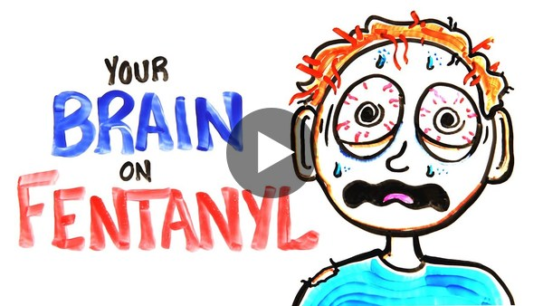 Fentanyl is a terrifying drug. This video shows the effect it has on your brain and, trust me, it's a giant NOPE.