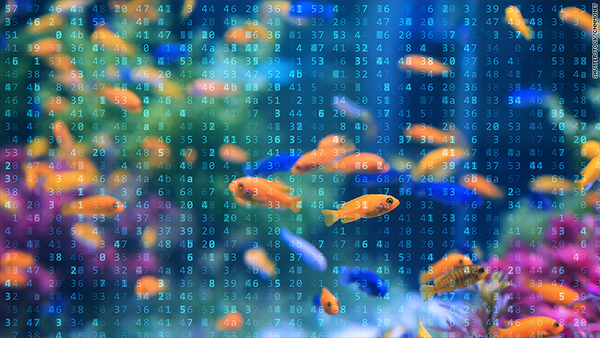 A smart fish tank left a casino vulnerable to hackers - Jul. 19, 2017
