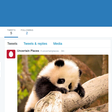 Make a Twitter bot that tweets random images (with node.js) | botwiki