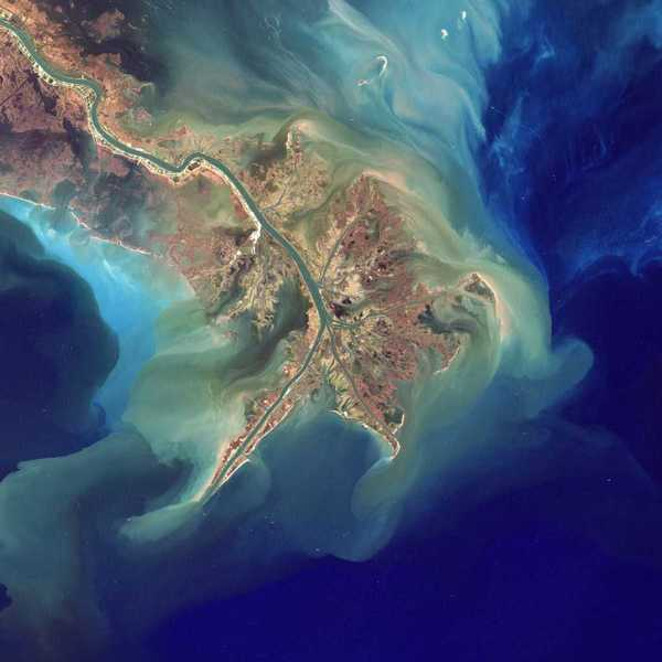 The Gulf of Mexico dead zone is larger than ever. Here's what to do about it. - SFGate