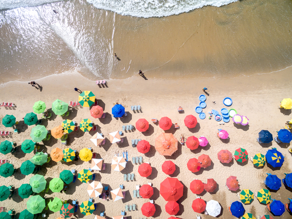 What the Beach Does to Your Brain   NBC News