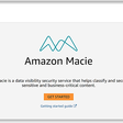 Hello Amazon Macie: Automatically Discover, Classify, and Secure Content at Scale | AWS Blog