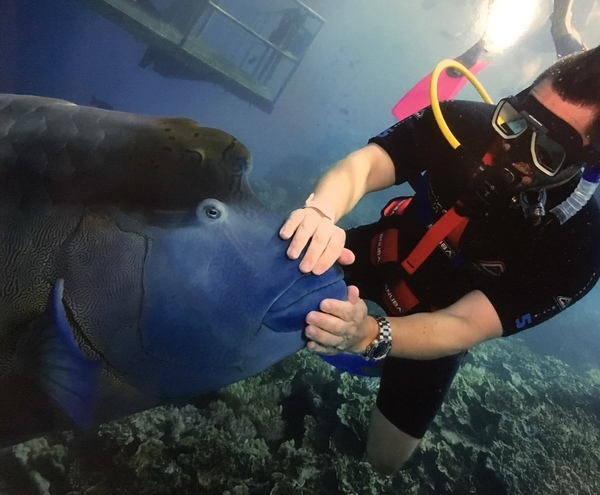 (my fav pic at diving at the Great Barrier Reef)
