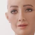 Sophia robot tells journalist: 'You've been reading too much Elon Musk'
