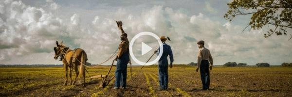 Mudbound | Official Trailer