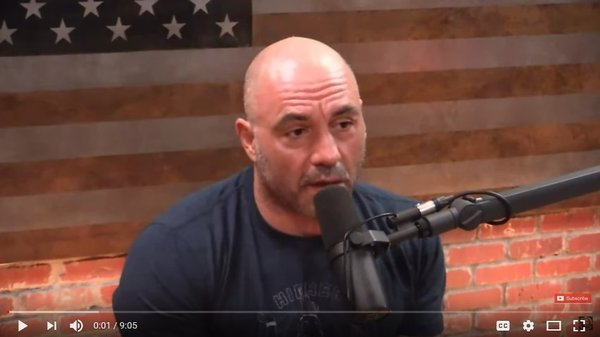 Joe Rogan gets his mind blown by a scientist talking about magic mushrooms.