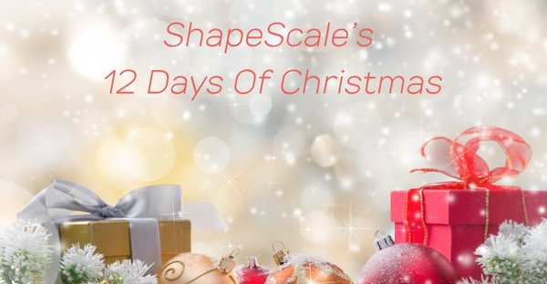ShapeScale's 12 Days Of Christmas