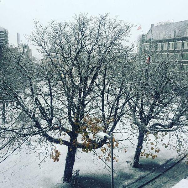 Sneeuw voor de deur!