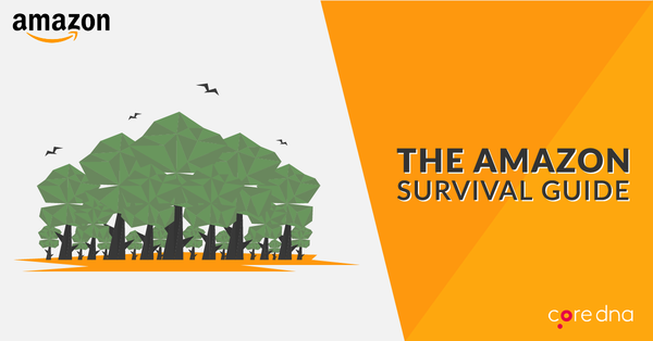 How to Compete With Amazon: The Amazon Survival Guide