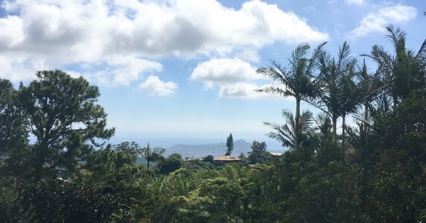 8. So erlebte eine hawaiianische Reporterin den Raketen-Fehlalarm