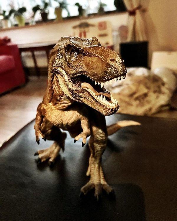 Deze T-Rex hielp Mauriceke (4) af van zijn 'lelijke dromen'.