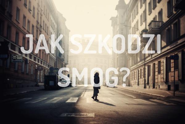 Nie istnieje osoba, która mogłaby pochwalić się stuprocentową odpornością na smog