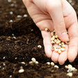 Five myths of pre-seed investing  |  TechCrunch
