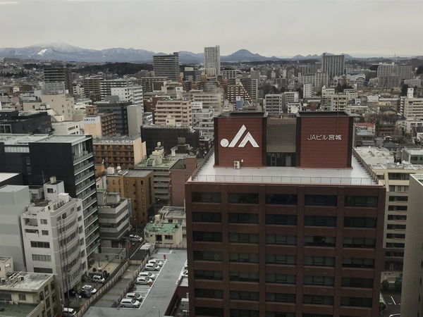The rooftops of Sendai