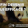 Je ne veux plus voir de pandas qui dansent | Monter son business
