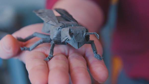 Robert Lang war Laser-Forscher bei der NASA – jetzt arbeitet er als Origami-Künstler