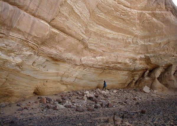 Forscher haben 10.000 Jahre altes Saatgut in der Sahara gefunden