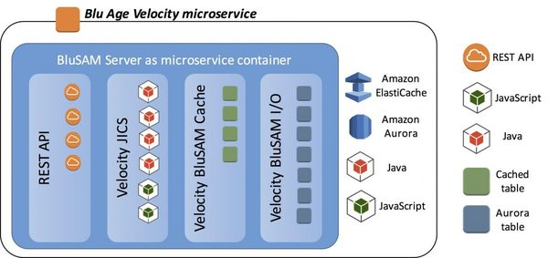 "Microservices design in the used ""Velocity"" framework."