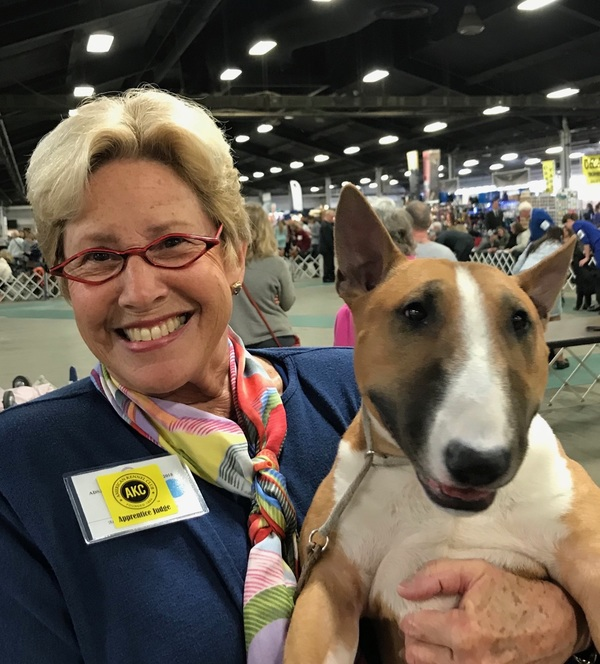 Loyal subscriber Sheila is a judge for the American Kennel Club. Here she is with a Miniature Bull Terrier at a dog show in Louisville, Kentucky. Sheila currently judges 17 breeds — 14 Hounds, 2 Non-Sporting, and 1 Working. If you'd like your pet to appear in The Highlighter, please let me know! j.mp/nominatepet