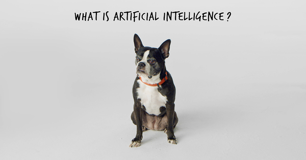 Artificial Intelligence: How We Help Machines Learn