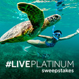Vacation Sweepstakes: Enter to Win A Dream Vacation | Diamond Resorts