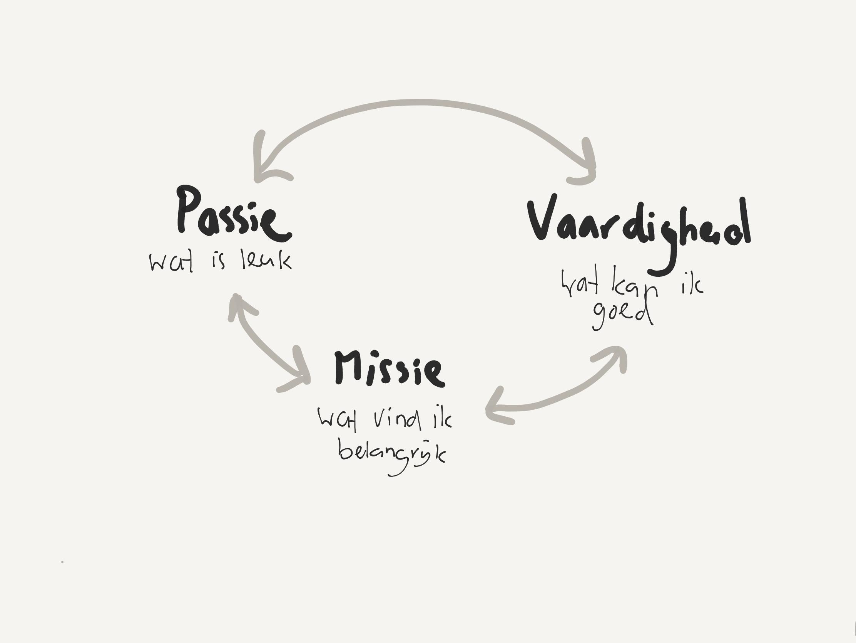 De drie componenten die samen zorgen voor motivatie en zingeving: passie (wat vind ik leuk?), vaardigheid (waar ben ik goed in?) en missie (wat vind ik belangrijk?).