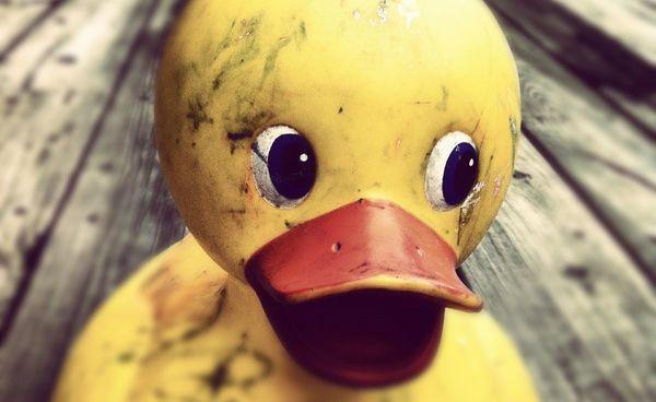 Brzydkie i groźne kaczątka czyli co się kryje w zabawkach kąpielowych – Crazy Nauka