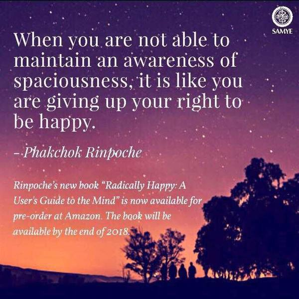 Radically Happy: A User's Guide to the... - Kyabgön Phakchok Rinpoche | Facebook