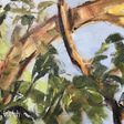 Trees: As we breathe with West Coast Canadian Artist Terrill Welch | Canadian Contemporary Artist Terrill Welch