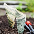 Seed Investment: Comparing SAFE and Convertible Notes