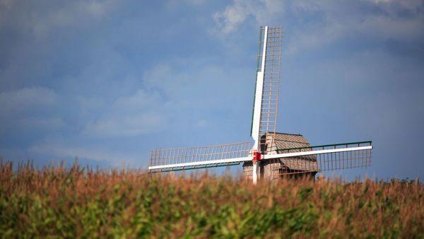 Cinq chiffres éloquents sur la ruralité dans les Hauts-de-France - 5 cijfers over het Noord-Franse platteland