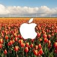 Onderzoek Apple: Nederland is Europese app-koploper