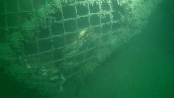 Losgelöste Fischernetze sind die Hauptursache für verschmutzte Ozeane – jedes Jahr kommen 640.000 Tonnen hinzu