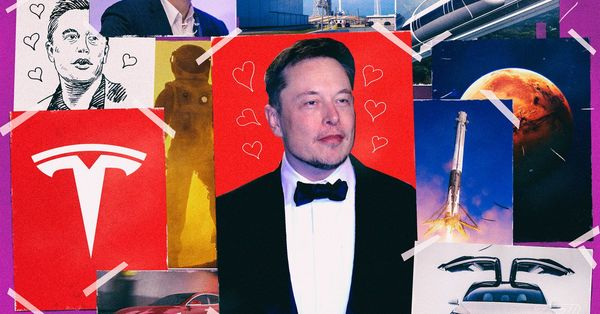 Inside the minds of Elon Musk's fans