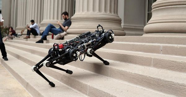 'Blind' robot dog can hunt you even on a moonless night