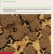 Impact of Open Offices on Collaboration | Philosophical Transactions of the Royal Society B: Biological Sciences
