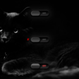 welcome to the dark side... we have kitties!