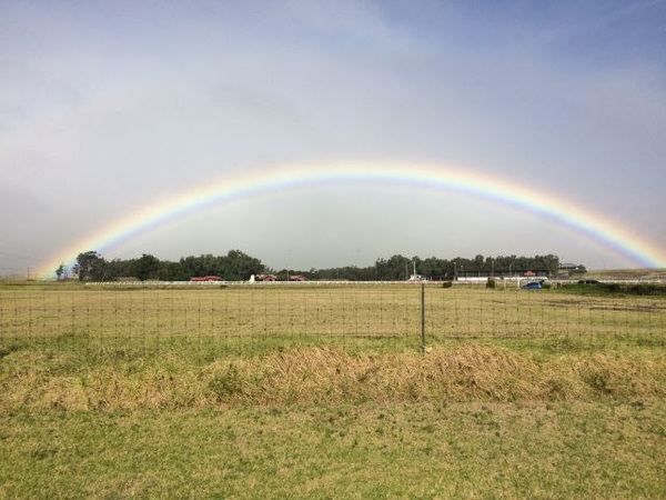 Loyal subscriber Erin recently spent her vacation in Hawaii. Look at the rainbow she found!