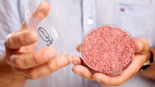 "Most Americans will happily try eating lab-grown ""clean meat"""