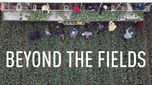 Beyond the Fields: Farm Workers Excel Academically Through Cesar Chavez Program  - NBC Bay Area