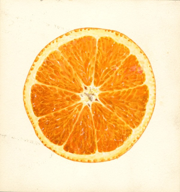 The etymology of Orange