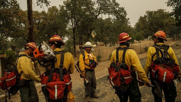1. Mexican immigrants work as wildland firefighters in Northern California (in Trump Country)