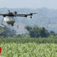 The crop-spraying drones that go where tractors can't - BBC News