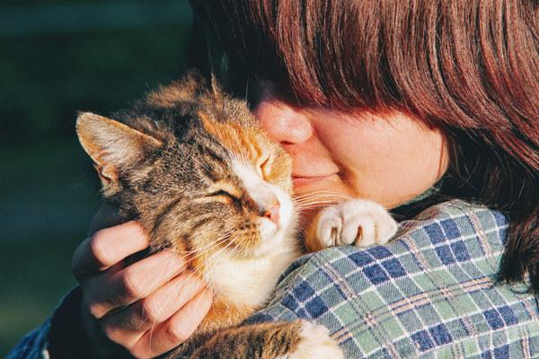 Czy koty nas lubią? Mamy naukową odpowiedź – Crazy Nauka