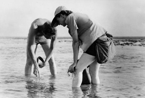 Rachel Carson była matką ekologii i doprowadziła do śmierci milionów ludzi