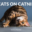 Cats on Catnip by Andrew Marttila | Hachette Book Group | Running Press