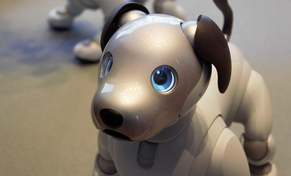Sony AIBO finally returns to the U.S., but it's one expensive pup
