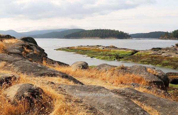 """Low Tide Edith Point Mayne Island BC"""