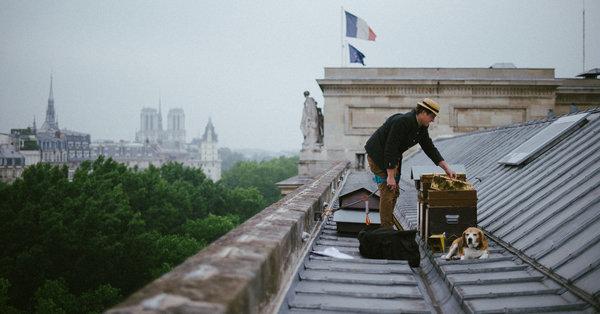 Vom Notre-Dame bis zum Finanzministerium – diese Fotos zeigen, wo in Paris Bienen gehalten werden