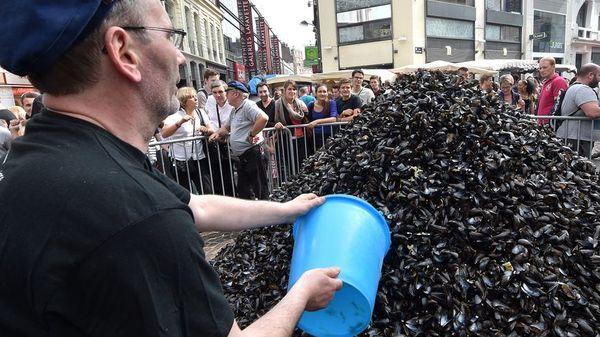 Braderie de Lille : les coquilles de moules seront transformées en carrelage made in Roubaix - Mosselschelpen van Rijselse braderie worden in Roubais ... tegels